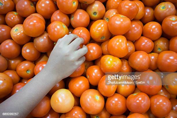 cropped hand of customer buying tomatoes at market stall - shaifulzamri stock pictures, royalty-free photos & images