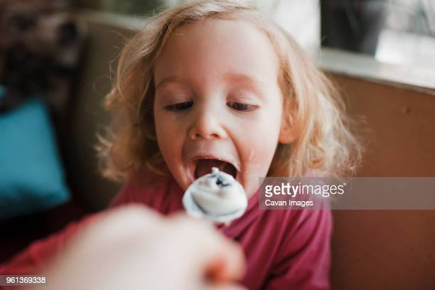 cropped hand of grandmother feeding granddaughter at home - alimentar fotografías e imágenes de stock