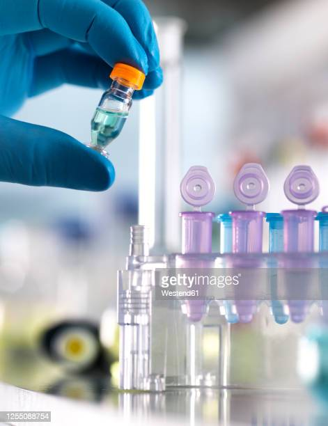 cropped hand of male scientist holding chemical formula in vial at laboratory - medical research stock pictures, royalty-free photos & images