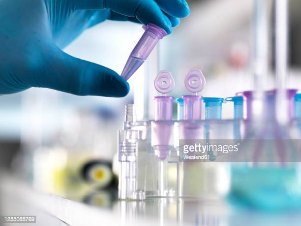 cropped hand of male scientist holding dna samples in vial at laboratory - laboratory stock pictures, royalty-free photos & images
