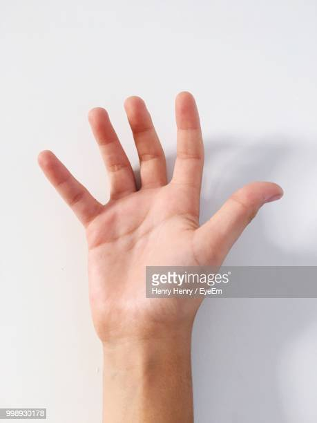 cropped hand of man against white background - open hand stock pictures, royalty-free photos & images