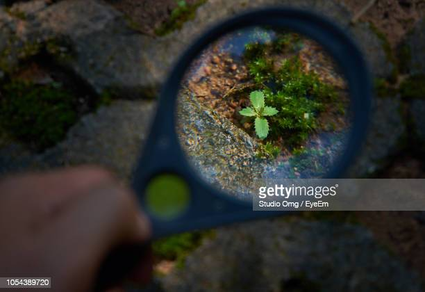 Cropped Hand Of Man Holding Magnifying Glass