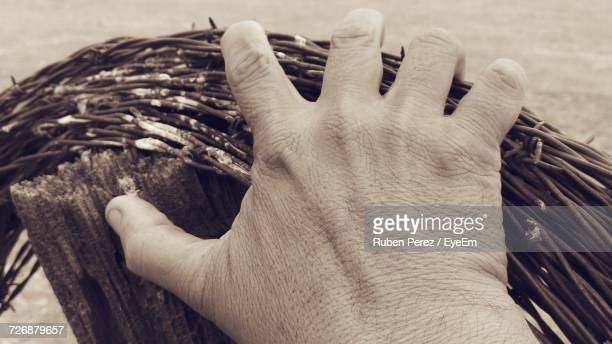 Cropped Hand Of Man Holding Rolled Up Barbed Wire Fence On Wooden Fence