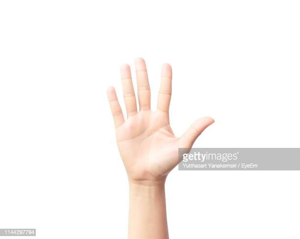 cropped hand of person gesturing against white background - palma da mão imagens e fotografias de stock
