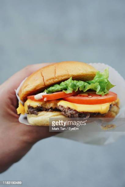 cropped hand of person holding burger - cheeseburger stock pictures, royalty-free photos & images
