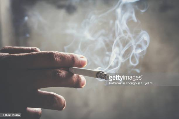 cropped hand of person holding burning cigarette - タバコを吸う ストックフォトと画像
