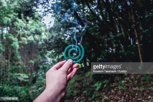 Cropped Hand Of Person Holding Burning Mosquito Coil In Forest