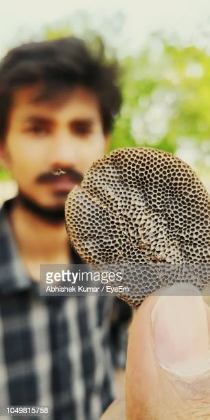 Cropped Hand Of Person Holding Honey Comb