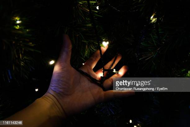 Cropped Hand Of Person Holding Illuminated String Lights On Christmas Tree In Dark