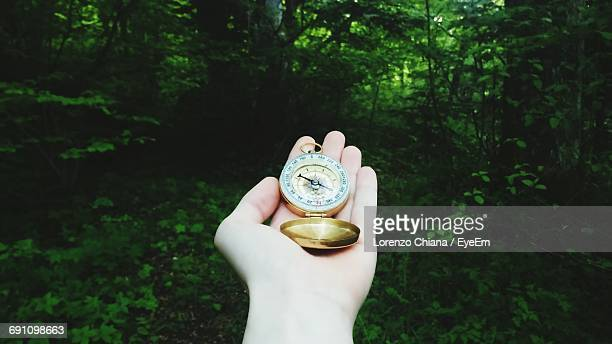 Cropped Hand Of Person Holding Navigational Compass Against Plants At Forest