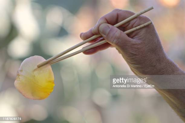 cropped hand of person holding rose petal with chopsticks - antonella di martino foto e immagini stock