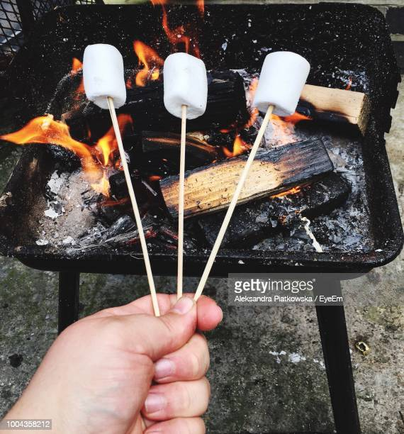 Cropped Hand Of Person Roasting Marshmallows Over Fire Pit