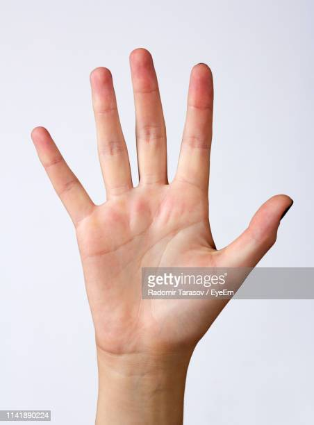 cropped hand of woman gesturing against white background - ストップ ストックフォトと画像