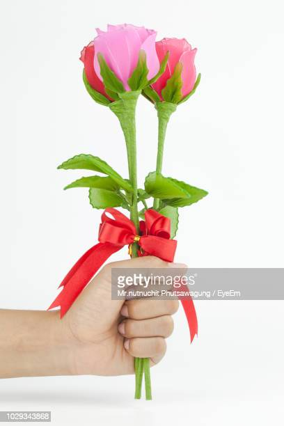cropped hand of woman holding artificial flowers against white background - fake stock pictures, royalty-free photos & images