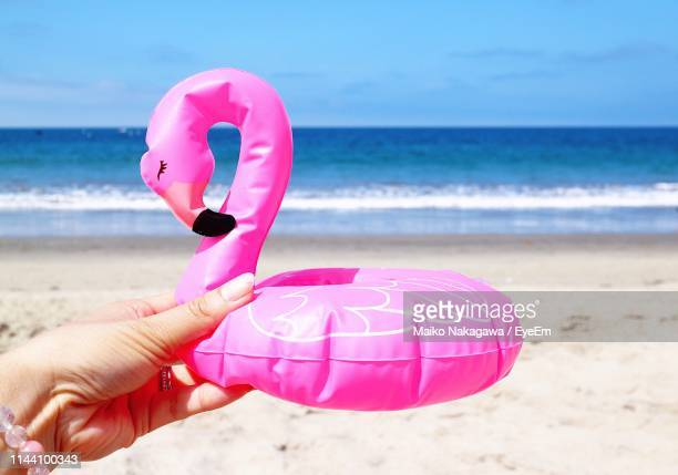 cropped hand of woman holding flamingo shaped small inflatable ring at beach during summer - part of stock pictures, royalty-free photos & images