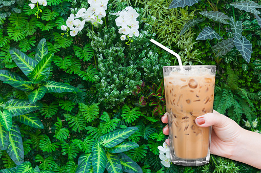 Cropped Hand Of Woman Holding Iced Coffee Against Plants - gettyimageskorea