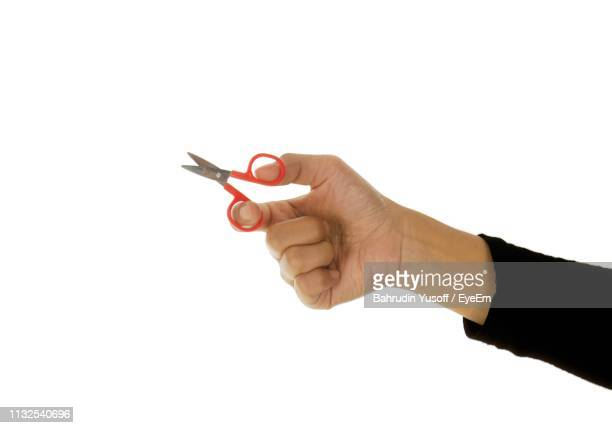 cropped hand of woman holding scissors against white background - scissors stock pictures, royalty-free photos & images
