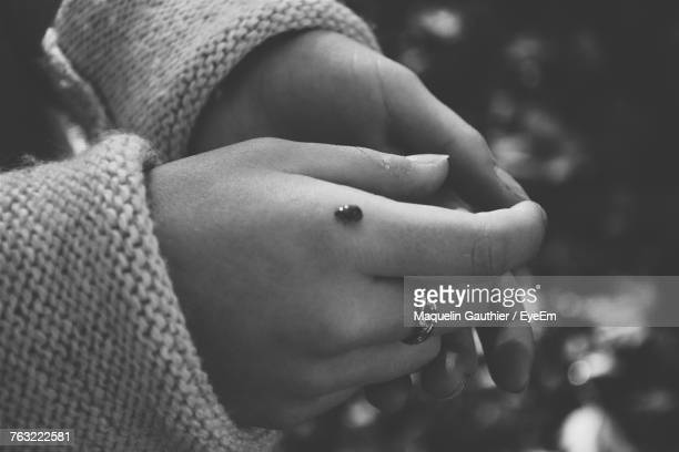 Cropped Hand Of Woman With Insect