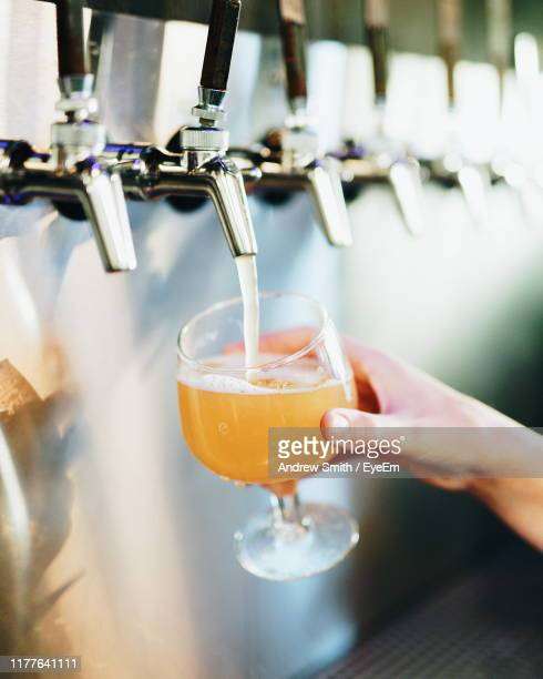 cropped hand pouring beer in glass - san diego stock pictures, royalty-free photos & images