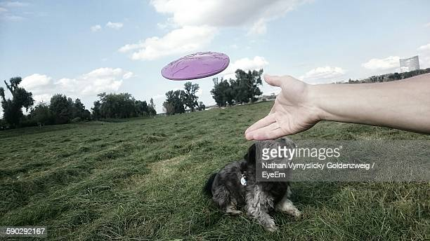 Cropped Hand Throwing Plastic Disc Above Dog On Field