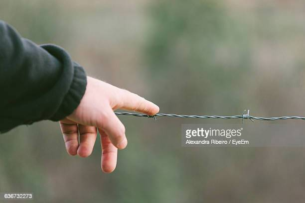 Cropped Hand Touching Barbed Wire