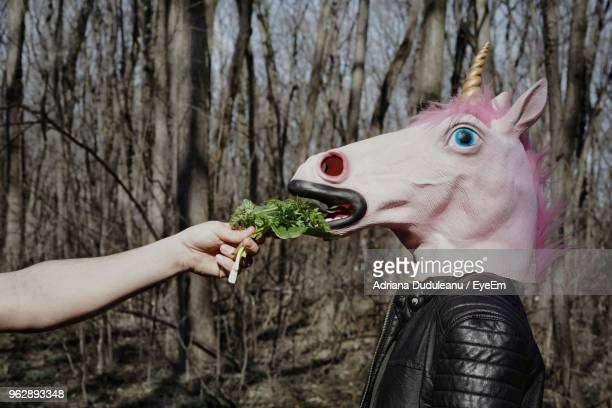 Cropped Hands Feeding Person Wearing Unicorn Mask In Forest