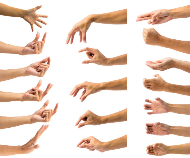 cropped hands gesturing against white background - human hand stock pictures, royalty-free photos & images