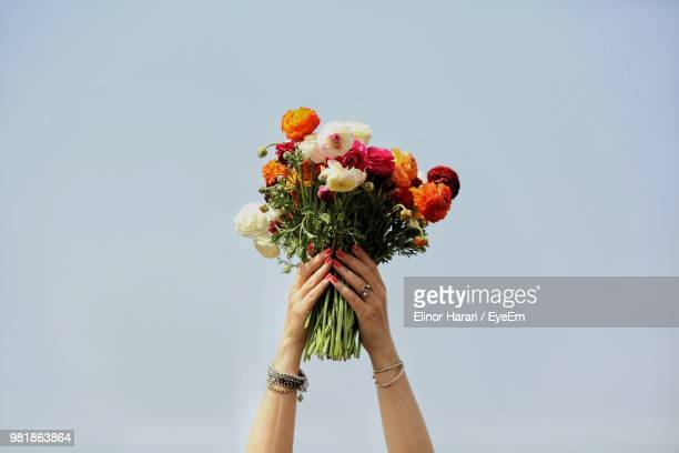 cropped hands holding bunch of flowers against sky - bouquet stock pictures, royalty-free photos & images