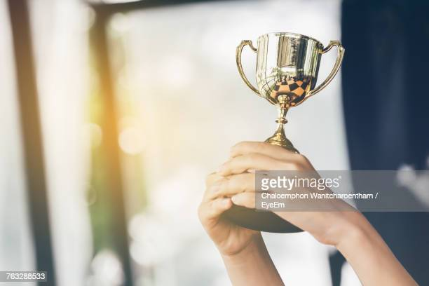 cropped hands holding trophy - trophy stock pictures, royalty-free photos & images