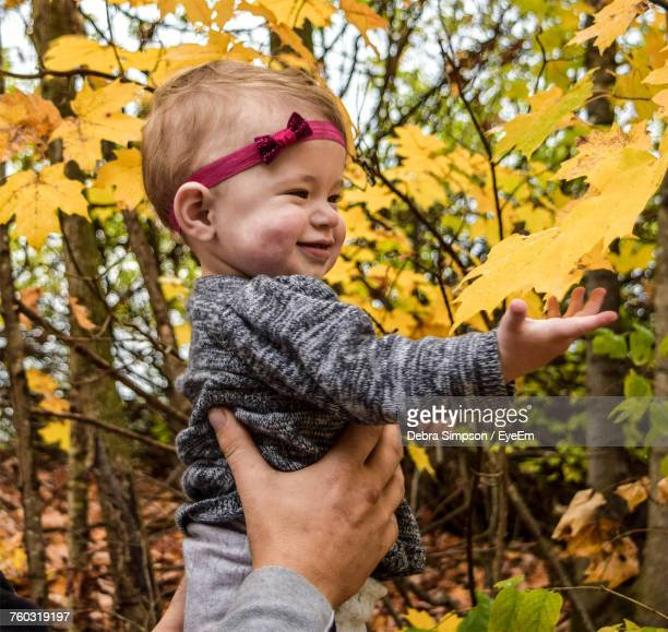 Cropped Hands Of Father Lifting Daughter In Forest During Autumn