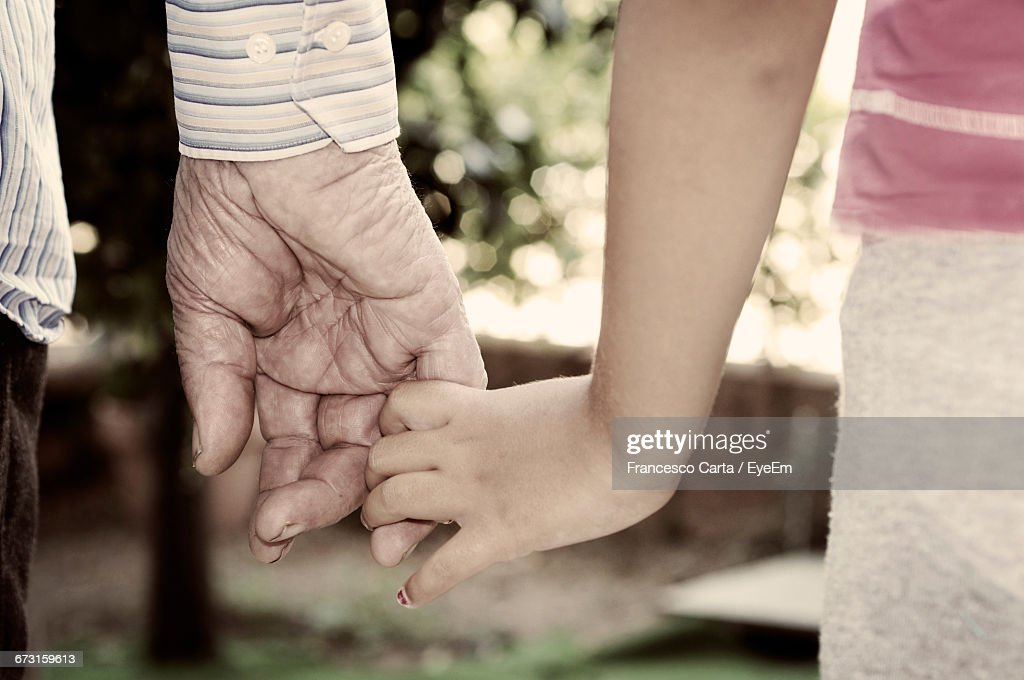 Cropped Hands Of Granddaughter And Grandfather High-Res -6594