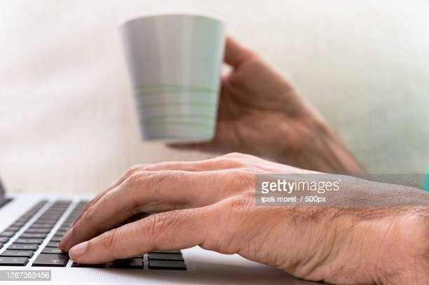 cropped hands of man using laptop on table, himmetdede, turkey - ipek morel stock pictures, royalty-free photos & images