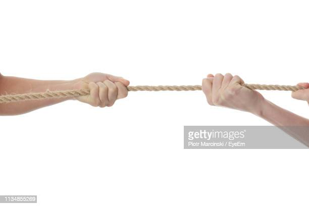 cropped hands of people holding rope against white background - 引く ストックフォトと画像