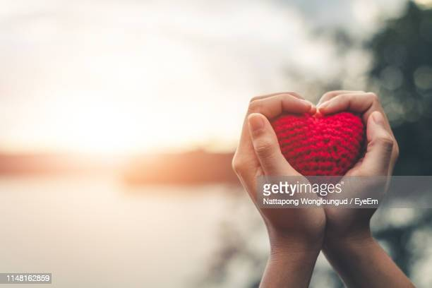 cropped hands of person holding heart shape against sky - heart shape stock pictures, royalty-free photos & images