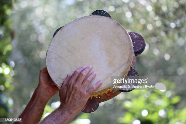 cropped hands of person playing tambourine - antonella di martino foto e immagini stock