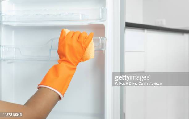cropped hands of woman cleaning fridge at home - appliance stock pictures, royalty-free photos & images