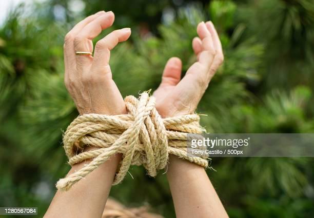 cropped hands of woman tied up tied up with rope against trees,bilbao,vizcaya,spain - frau gefesselt stock-fotos und bilder