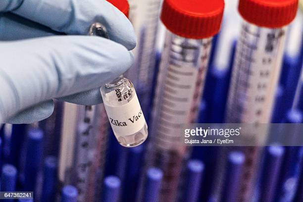 cropped image of biologist holding zika vaccine at laboratory - zika virus stock pictures, royalty-free photos & images