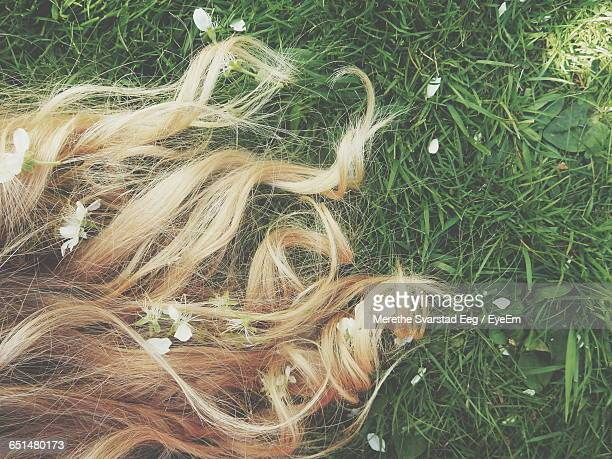 Cropped Image Of Blonde Hair On Grassy Field