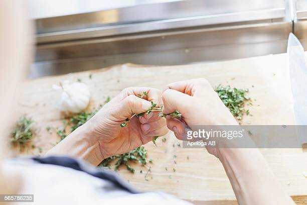 Cropped image of chef cleaning lemon thyme in kitchen