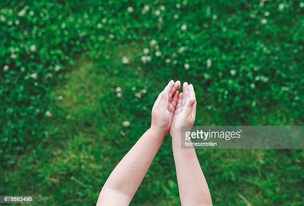 cropped image of child over field - bortes stockfoto's en -beelden