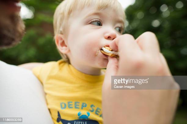 cropped image of father feeding son smore in backyard - cracker snack stock pictures, royalty-free photos & images