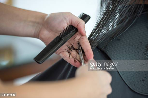 Cropped Image Of Female Hairdresser Cutting Woman Hair