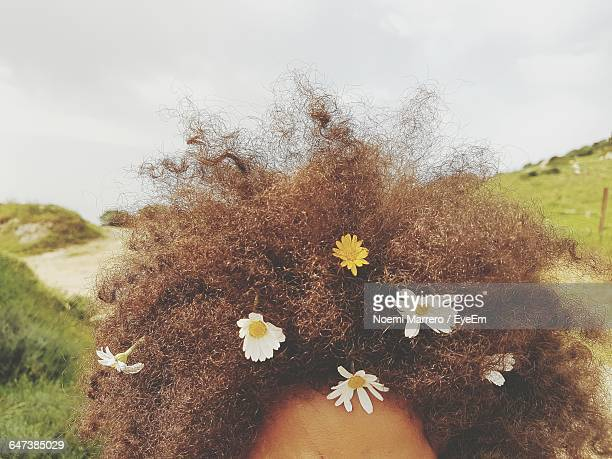 Cropped Image Of Flowers On Curly Hair
