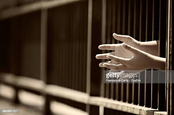 Cropped Image Of Hand Coming Out From Prison