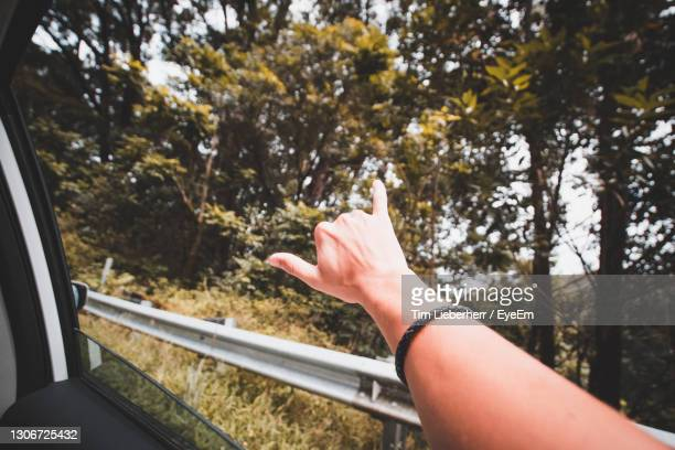 cropped image of hand gesturing out of car window - unusual angle stock pictures, royalty-free photos & images
