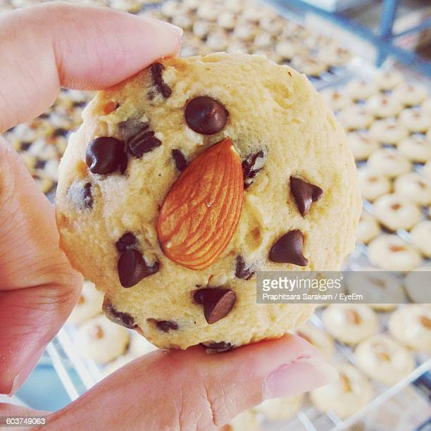 Cropped Image Of Hand Holding Chocolate Chip Cookie