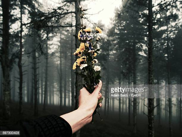 Cropped Image Of Hand Holding Flowers At Forest