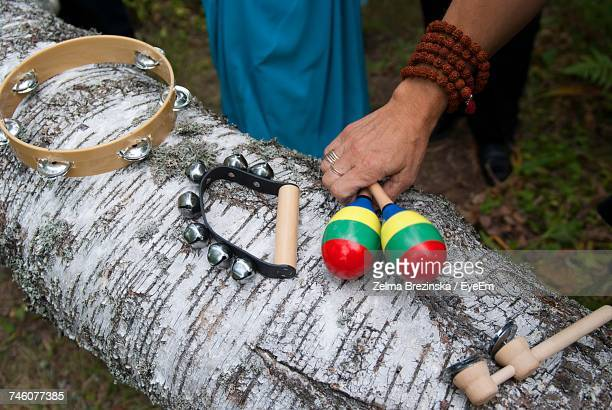 Cropped Image Of Hand Playing Old-Fashioned Musical Instrument On Log During Wedding