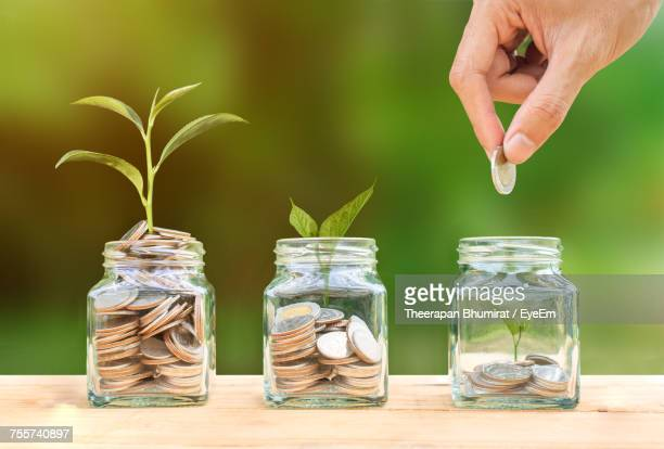 cropped image of hand putting coins in jars with plants - savings stock pictures, royalty-free photos & images